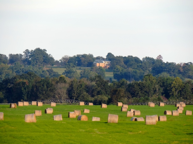 Hundreds of Bales