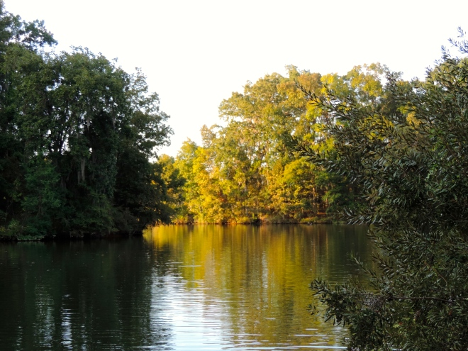 Back waters of the Alabama River, Holy Ground Battlefield Park